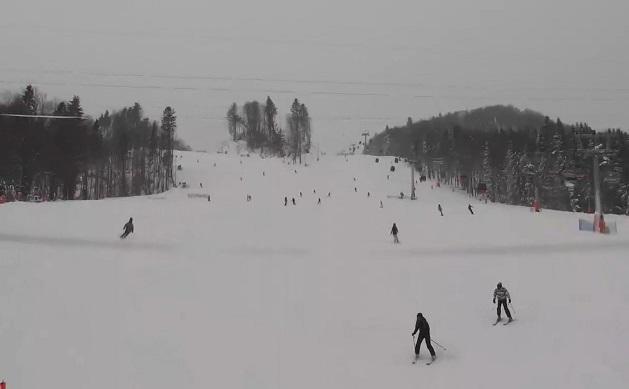 Stok narciarski Jaworzyna Krynicka - Krynica-Zdrój