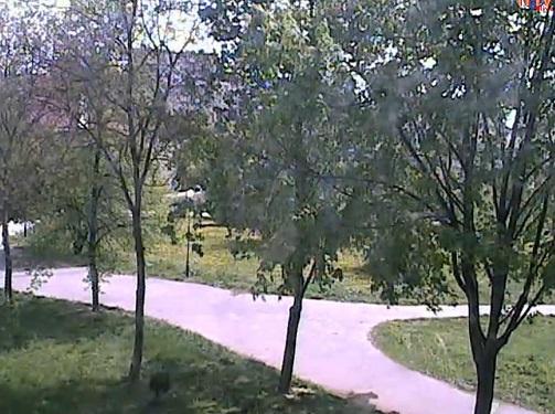 Brama krakowska lublin online dating 5
