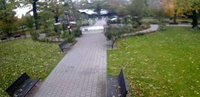 Fontanna - Park im. hr. Skarbków - Grodzisk Mazowiecki