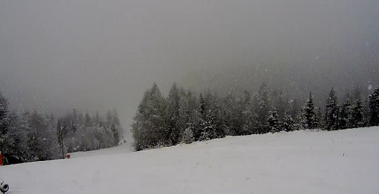 Jastrzębica Ski - Przyłęków