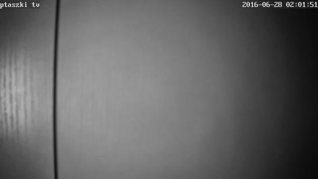 Karmnik LIVE - Głuchołazy